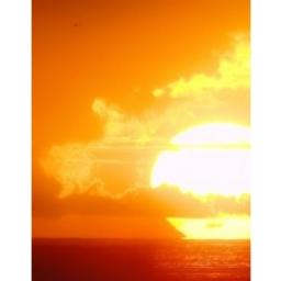 Солнечный Вектор